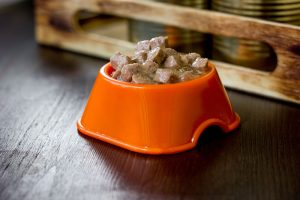 Plastic Dog Food Bowl