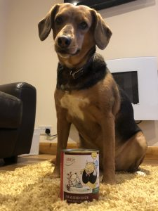 anifit-high-quality-dog-food